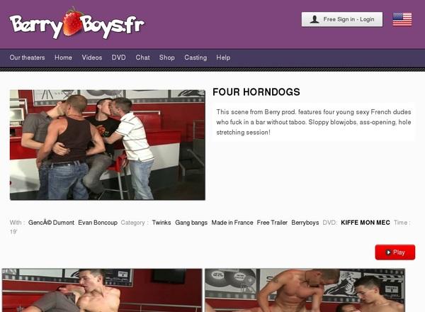 Free Password To Berryboys.fr