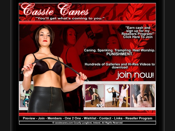 Accounts Free Cassie Canes